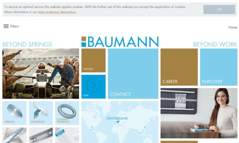 Baumann Springs USA, Inc.